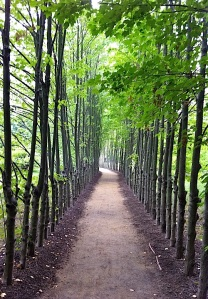 Sculpture Garden Path