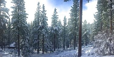 December_Snow